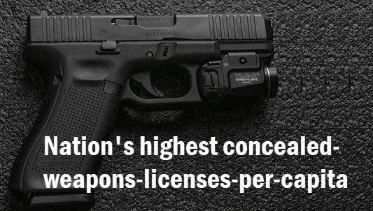 Hand gun with copy: [Florida] nation's highest concealed-weapons-licenses-per-capita